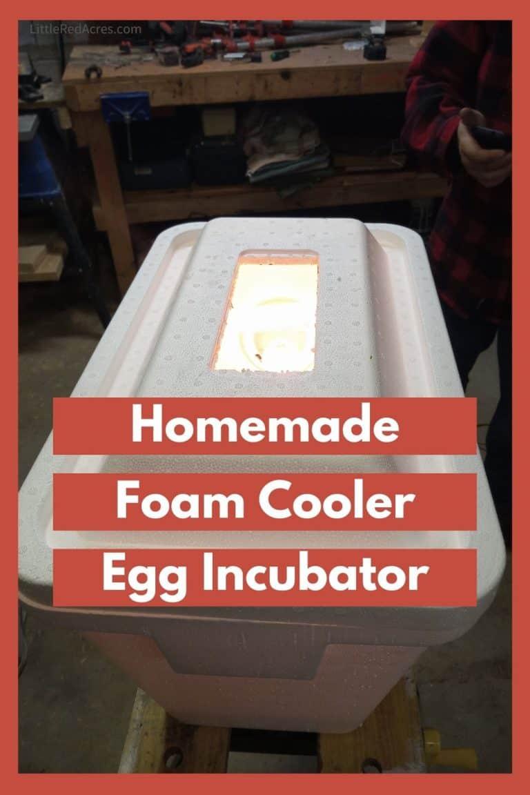 Homemade Foam Cooler Egg Incubator