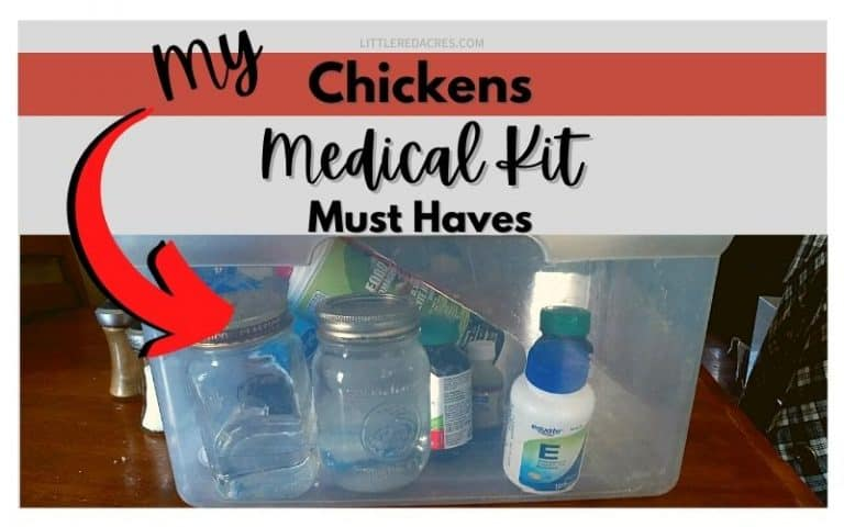 Keeping a Medical Kit for Chickens